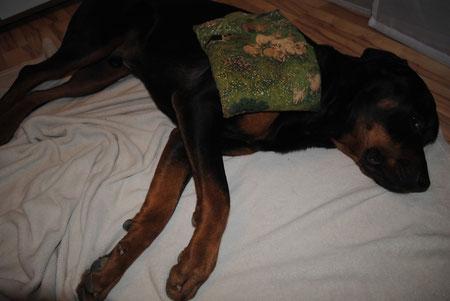 Thermotherapie / Wärmeanwendung gegen Verspannungen oder zur Vorbereitung