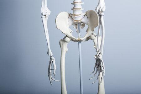 骨盤の動きがわるい