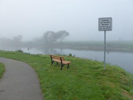 Frühherbstlicher Nebel an der Oberweser b. Oedelsheim