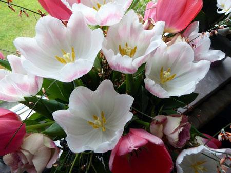 Blumen zum 77. Geburtstag