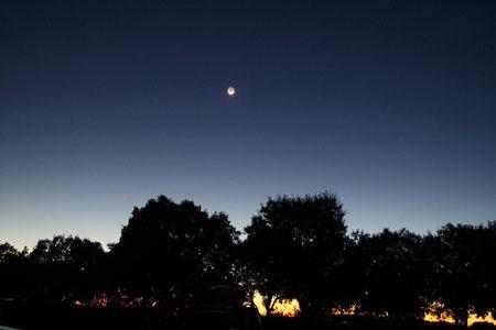 Crepúsculo vespertino