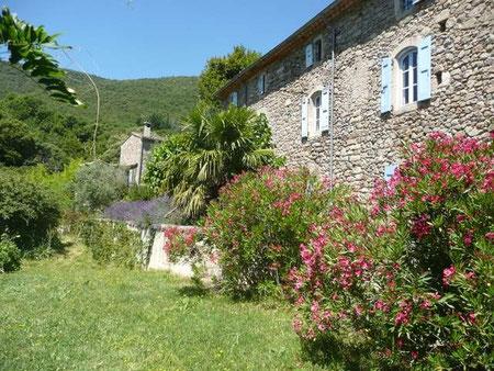 Oleanders aan de zuidzijde