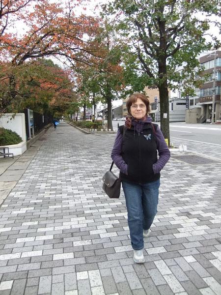 En route vers la gare de Nijō !