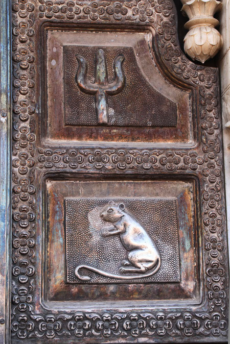 überall Rattensymbole
