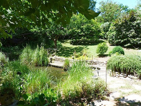 L'étang, petit mais plein de vie !