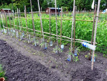 Chaque jardinier entretient sa parcelle (R. Peuron)