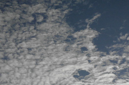 ´D In The Skies´