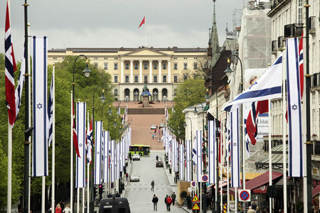 The Royal Palace Private City Tours Oslo