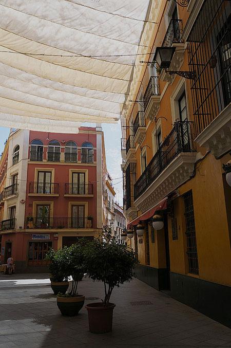 Photographie, Espagne, Andalousie, Séville, El Centro, velum, rue déserte, sieste, rue Sierpes, Mathieu Guillochon.