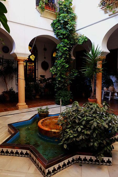 Photographie, Espagne, Andalousie, Cordoue, judería, patio, bassin, végétation, colonne, ombres, Mathieu Guillochon
