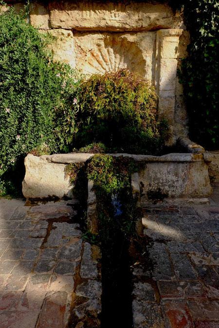 Photographie, Espagne, Andalousie, Cordoue, alcazar, fontaine,  jardins, architecture, bassins, haies, vert, ocre, matière, couleurs, voyages, vacances, Mathieu Guillochon.