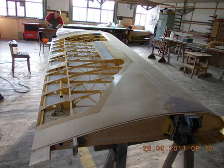 Wing covering