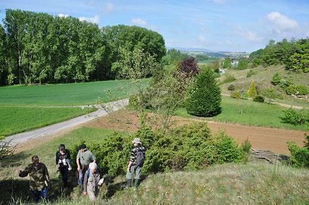 Sortie botanique Prieuré de Charrière Chateauneuf-de-Galaure