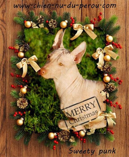 25/12/2012 Joyeux noël !