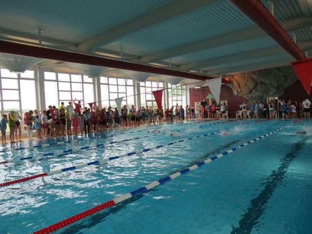 Schwimmfest 2013