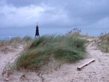 Die Flut spült immer wieder allerlei Strandgut an den Strand und die Dünen