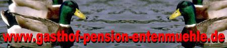 www.gasthof-pension-entenmuehle.de Urlaub im Naturpark Fichtelgebirge übernachten Sie im Gasthof und Pension Entenmühle im romantischen Ölschnitztal in Franken/Bayern