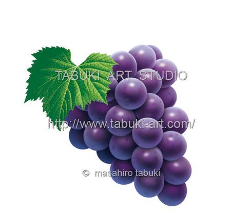 くだもの ブドウイラスト Grape シズルイラスト ぶどう 巨峰
