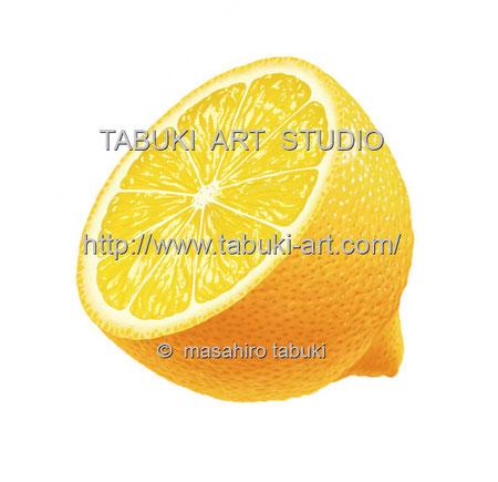 レモンのイラスト lemon 檸檬 レンタル ストック シズル感