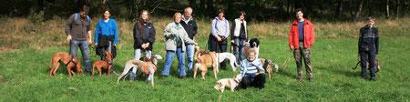 Tipps Hundehaltung