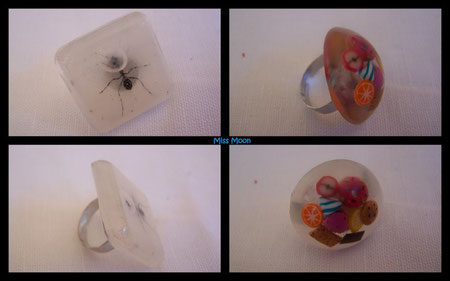 pour le fourmilier je suis certaine que cette fourmi est très gourmande
