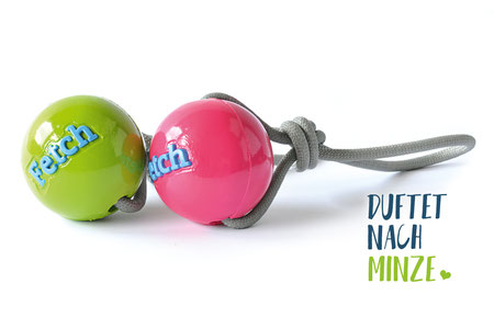Hundestrand Hundespielzeug Ball mit Seil Fetch Ball Orbee Tuff Minze Planet Dog