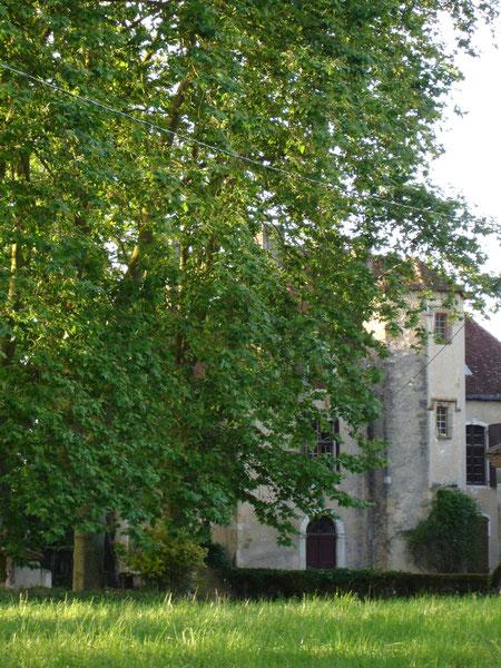 Aperçu du château dans son écrin de verdure