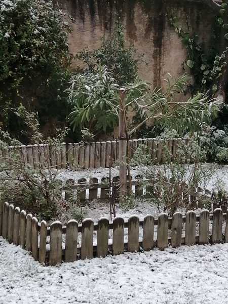 Jardin d'Hiver. Crédit photo A. Molina