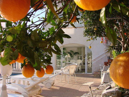 Ferienwohnung Valencia, Villa Gandia Hills, www.ferienwohnung-valencia.com