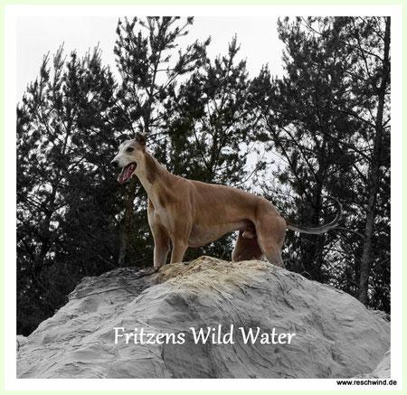 Fritzens Wild Water ...... the king of Resch Wind