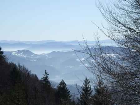 Hier ist's so schön, wie im Schwarzwald