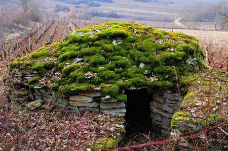 Cabane de vignes en Bourgogne.