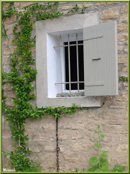 Fenestrou et verdure - Goult, Lubéron - Vaucluse (84)