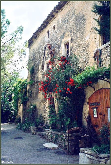Façade fleurie d'un atelier de sculptures de bois - Goult, Lubéron - Vaucluse (84)
