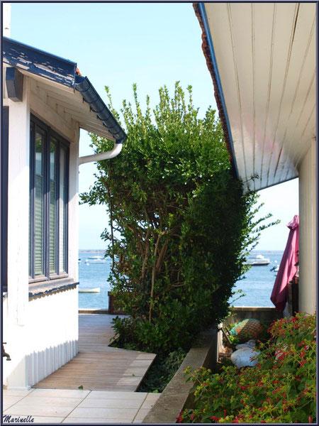Maisons en bordure du Bassin, Village de L'Herbe, Bassin d'Arcachon (33)