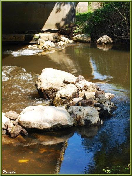 Ainsi coule La Leyre entre les pierres, Sentier du Littoral au lieu-dit Lamothe, Le Teich, Bassin d'Arcachon (33)