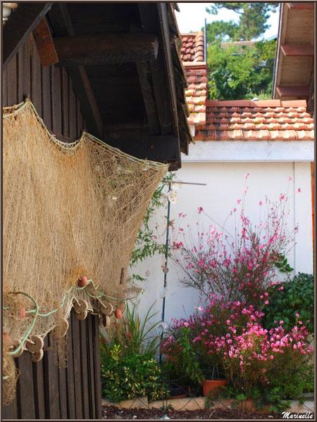 Filet de pêche pendu dans ruelle fleurie, Village de L'Herbe, Bassin d'Arcachon (33)