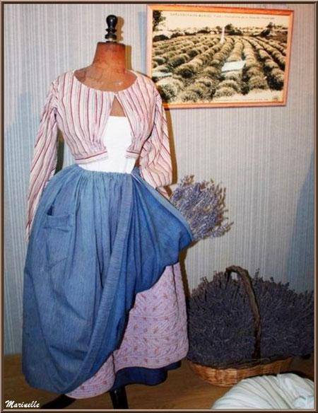 """Le """"Musée de la Lavande"""" à Coustellet (84) : ancien vêtement d'une coupeuse de lavande"""