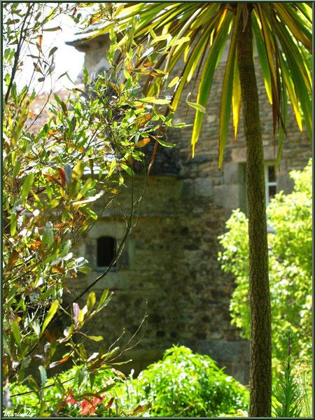 Les Terrasses et le Manoir derrière la végétation - Les Jardins du Kerdalo à Trédarzec, Côtes d'Armor (22)
