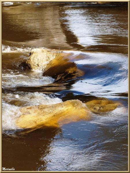 Ainsi coule La Leyre en hiver entre les pierres, Sentier du Littoral au lieu-dit Lamothe, Le Teich, Bassin d'Arcachon (33)