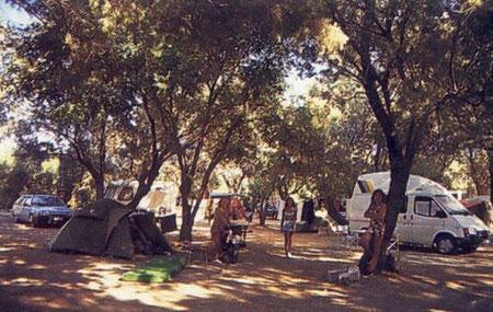 Camping Mithymna - Platz