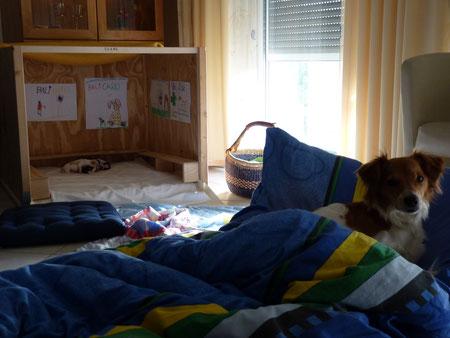 Das Matratzenlager ist doch sehr gemütlich