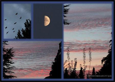 der Mond in der letzten Woche und ein roter Himmel