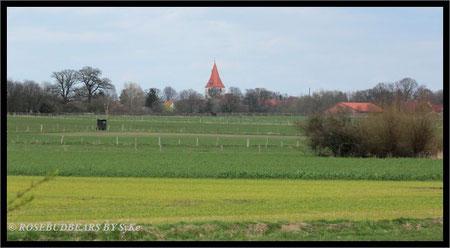 ein Spaziergang durch Wiesen und Weiden - mit Blick auf Isernhagens St. Marien Kirche - der Turm wurde um 1500 aus Raseneisenstein gebaut