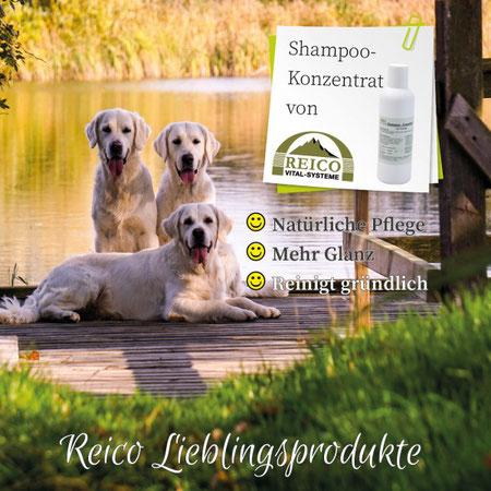 Reico Hunde Shampoo ist eine natürliche Pflege, mit mehr Glanz und reinigt gründlich