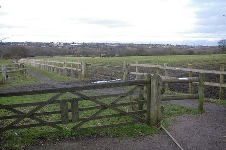 Footpath from the Visitor Centre towards Bourn Brook. Photograph © Phil Champion licensed for reuse under Creative Commons Licence Attribution-Share Alike 2.0 from the Geograph website OS reference SO9983.