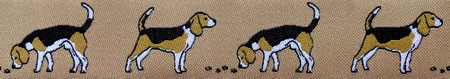 Beagle beige