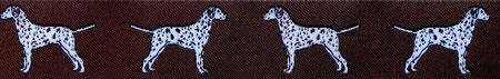 Dalmatiner braun