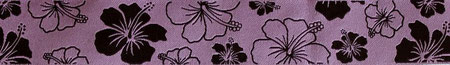 Hibiskus flieder 1