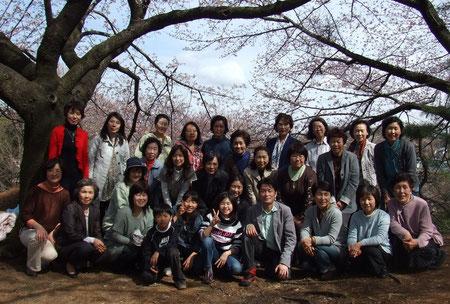 お花見 (ひなた村にて) 2010年